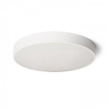 Stropní svítidlo  LED R13334