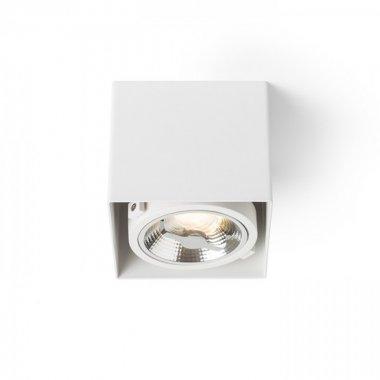 Stropní svítidlo  LED R13361