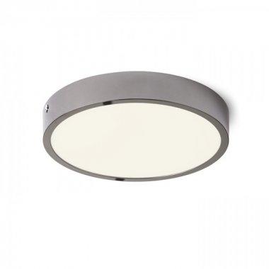 Stropní svítidlo  LED R13405