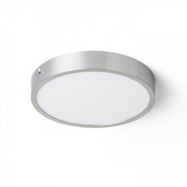 Stropní svítidlo  LED R13445