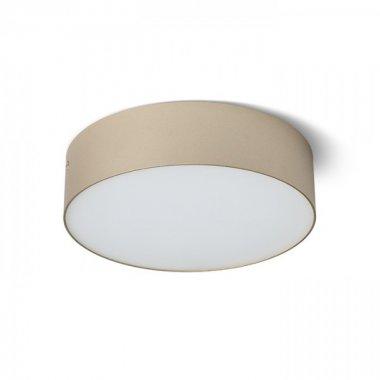 Stropní svítidlo  LED R13481