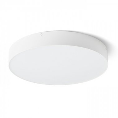 Stropní svítidlo  LED R13484