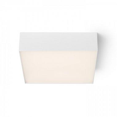 Stropní svítidlo  LED R13488