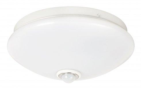Stropní svítidlo RA 2499