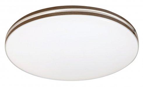 Stropní svítidlo RA 2763