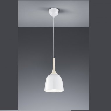Lustr/závěsné svítidlo TR 306200101