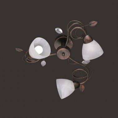 Stropní svítidlo TR 600700328