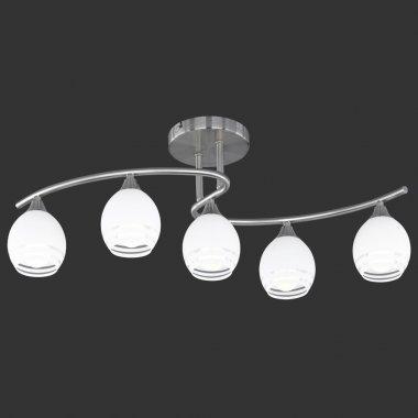 Stropní svítidlo TR 605600507
