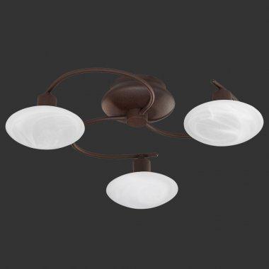 Stropní svítidlo TR 6380031-24