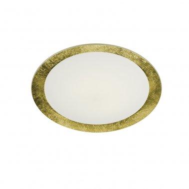 Stropní svítidlo LED  TR 656812079