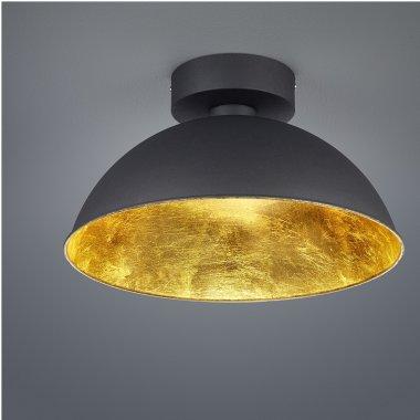 Stropní svítidlo LED  TR 676510302