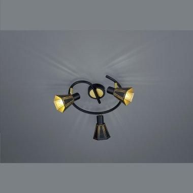 Přisazené bodové svítidlo TR 800300332