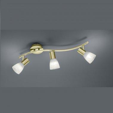 Přisazené bodové svítidlo LED  TR 871010308