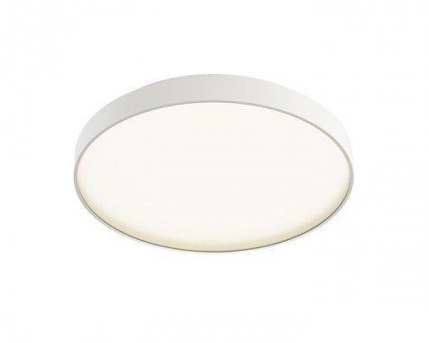 Stropní svítidlo  LED R12117-2