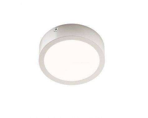 Stropní svítidlo  LED R12131-2