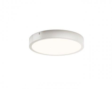 Stropní svítidlo  LED R12134-2