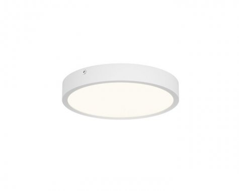 Stropní svítidlo  LED R12134-4
