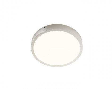 Stropní svítidlo  LED R12135-1