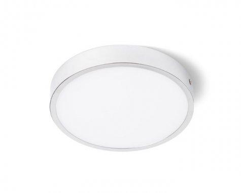 Stropní svítidlo  LED R12136-2