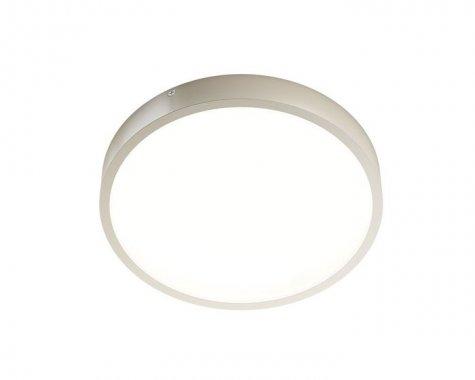 Stropní svítidlo  LED R12139-1