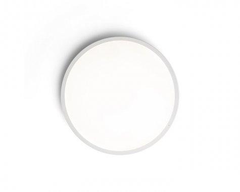 Stropní svítidlo  LED R12140-2