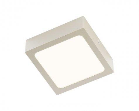 Stropní svítidlo  LED R12142-2