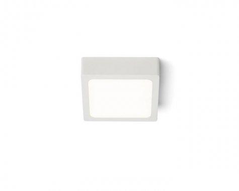 Stropní svítidlo  LED R12142-4