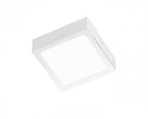 Stropní svítidlo  LED R12143-1