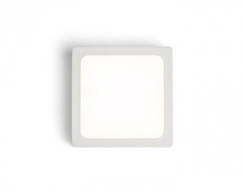 Stropní svítidlo  LED R12143-4