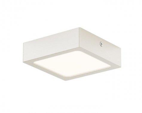 Stropní svítidlo  LED R12144-1