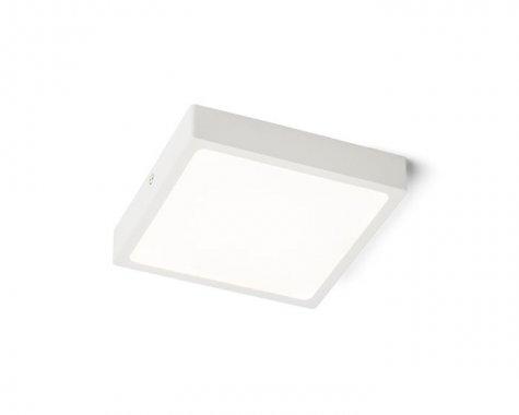Stropní svítidlo  LED R12148-2