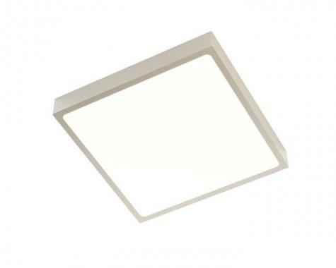 Stropní svítidlo  LED R12150-2