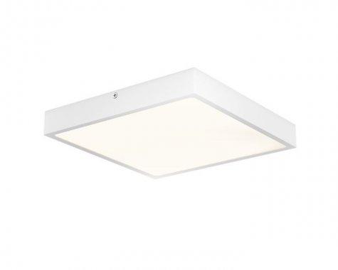 Stropní svítidlo  LED R12150-4