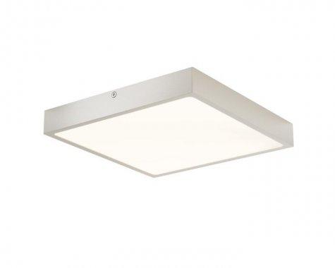 Stropní svítidlo  LED R12153-2