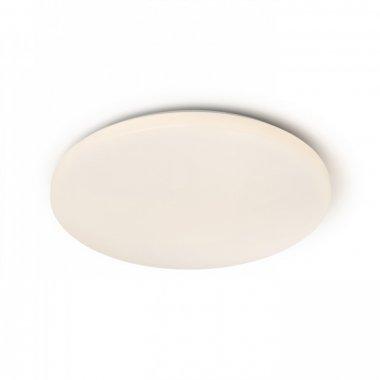 Stropní svítidlo  LED R12433-1
